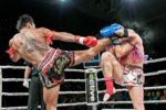 Тайский бокс (муай-тай)